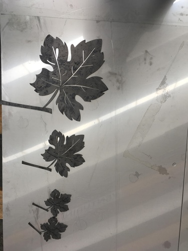 Leaves set after cutting